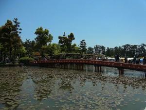 Parque Tennogawa