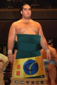 O brasileiro Kaisei. Foto: sumodb.sumogames.de